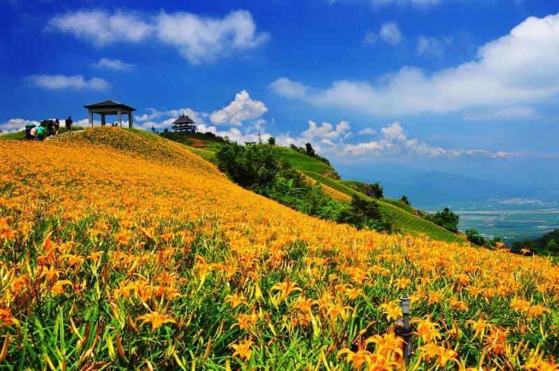尚海旅遊 Sunhi Tour